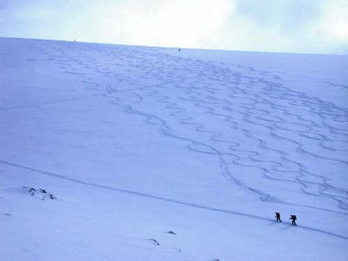 Tracks on North slope on Blanket Glacier