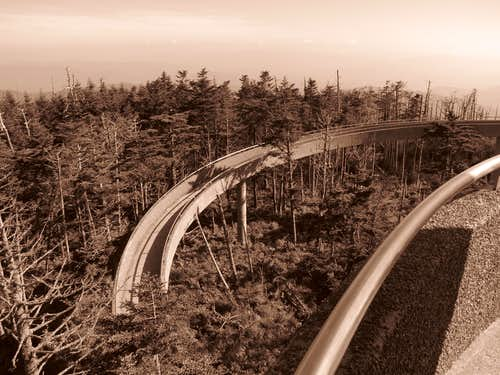 Ramp to Clingman's Dome Watchtower
