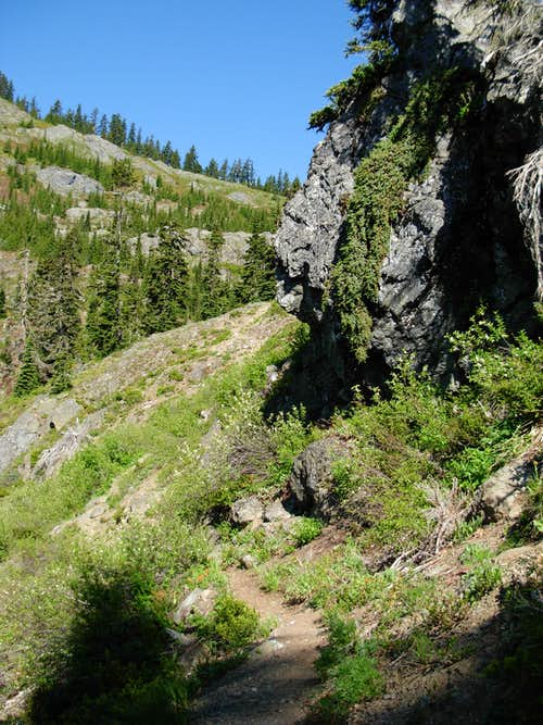 Thorp Mountain Via Knox Creek Trail