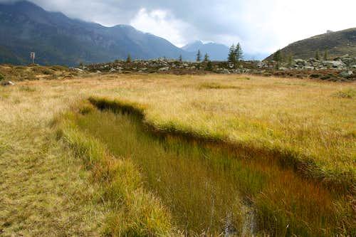 Wetland on a plateau at Grossbacher Alm