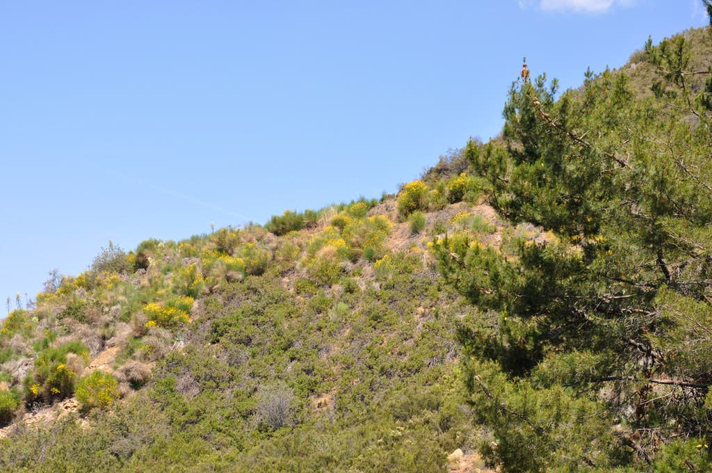 Views of the surrounding areas