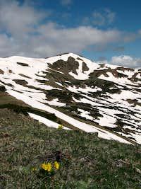 Alpine View, Vasquez Peak Wilderness