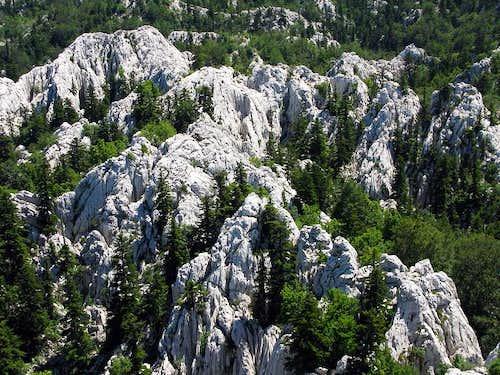 Limestone chaos on Crnopac mountain