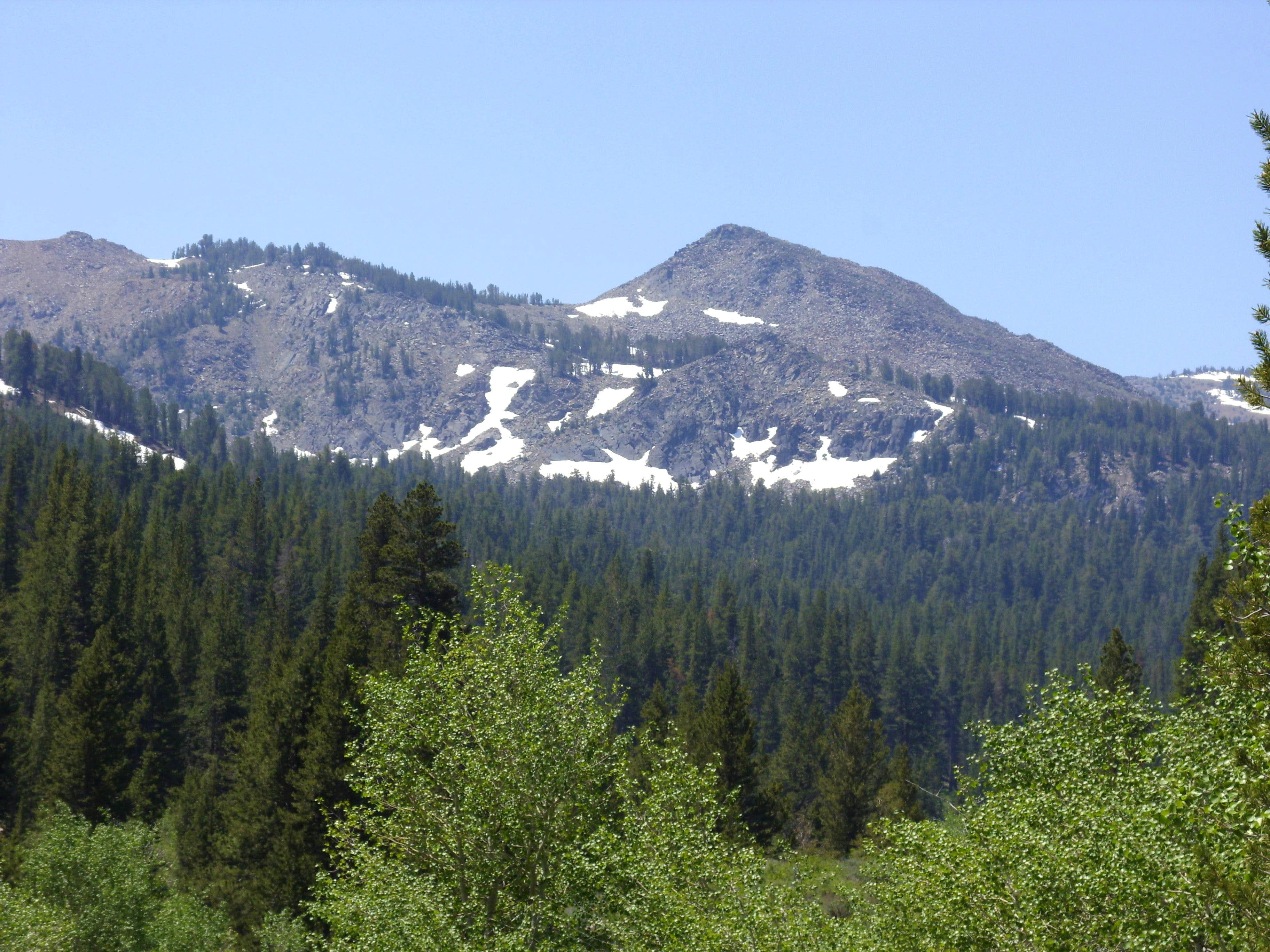 Peak 10430 – Hoover Wilderness