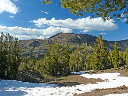 Sonora Peak from Sonora Pass