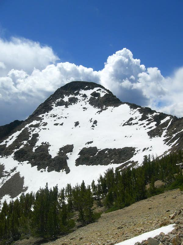 White Mountain's East Face