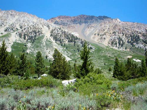 Victoria Peak 11,683'