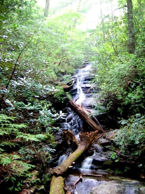 Mill Creek Falls, along the...