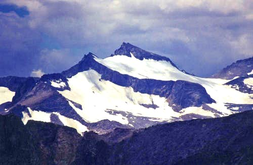 Mt. Lyell from Mt. Wood