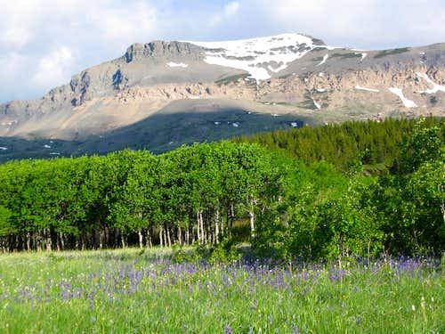 Calf Robe Mountain