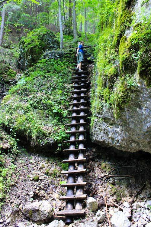 Sokolia Dolina, Slovensky raj