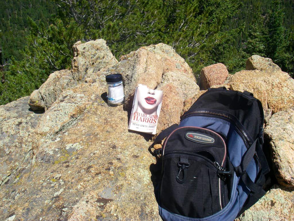 Cookstove Summit log and stuff