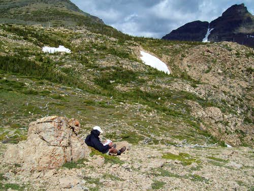 Gridlines, Goat Signs and Pika Poop: Citizen Science in Glacier National Park
