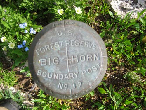 Forest Boundary Marker