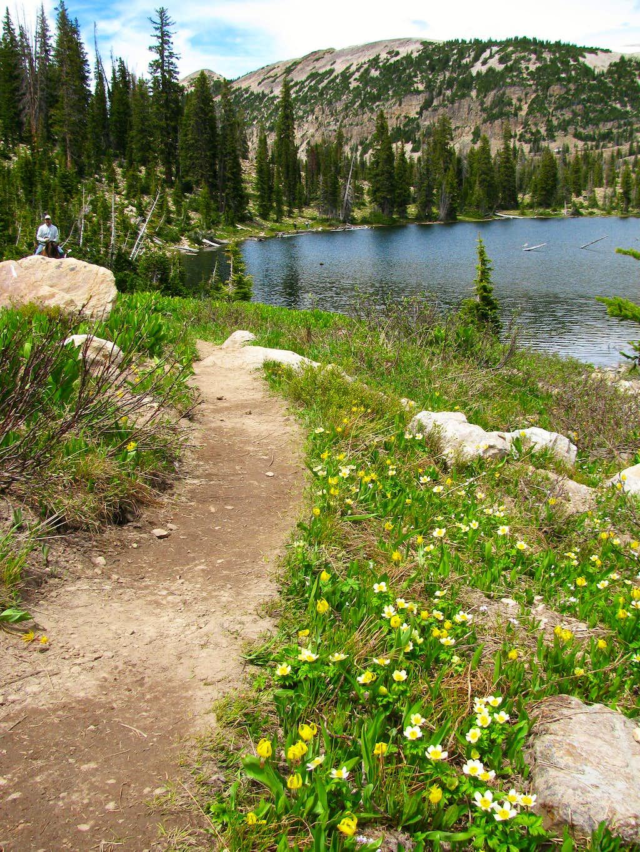 Clyde Lake trail
