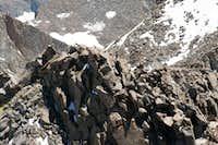 Climbers on Polemonium