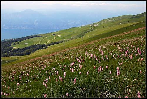 Below Costabella ridge