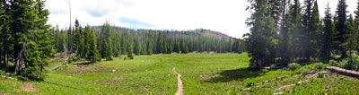 Trail Flat Tops