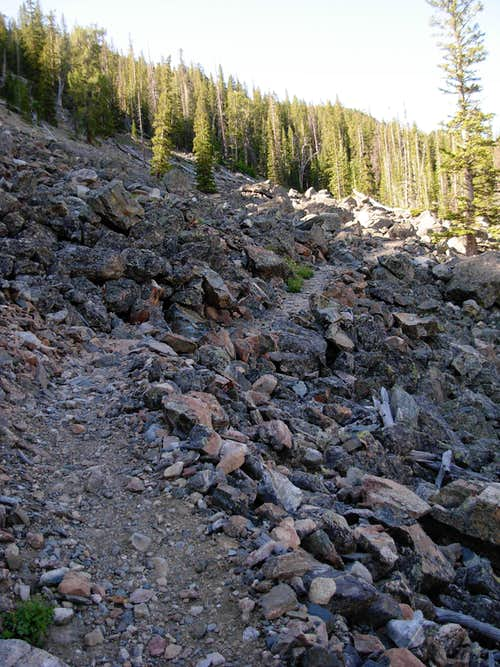 Switchbacks Along Glacier Trail