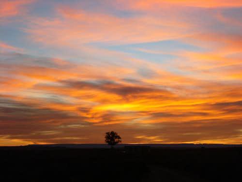 Sunset, NM