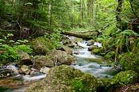 Hiking Mount Flume