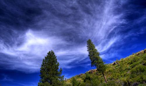 Dunnigan Cloudscape