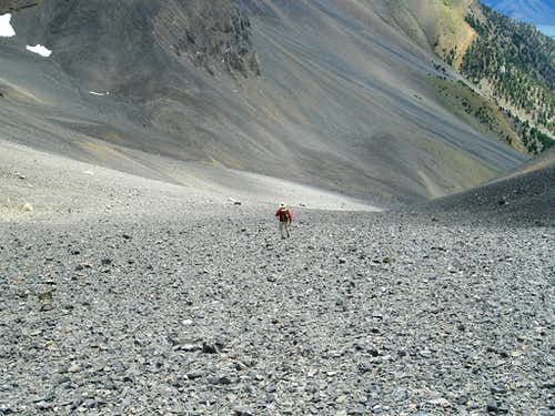Zach in the Endless Scree