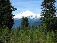 Mt. Baker from  Shannon Ridge Trail