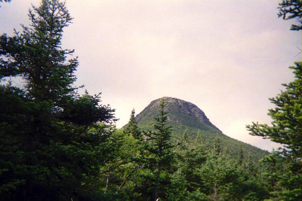 first view of summit cone