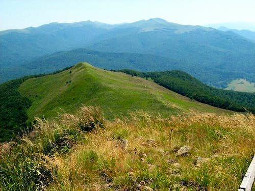 Carynska Meadow - High Point Kincki (1148 m)