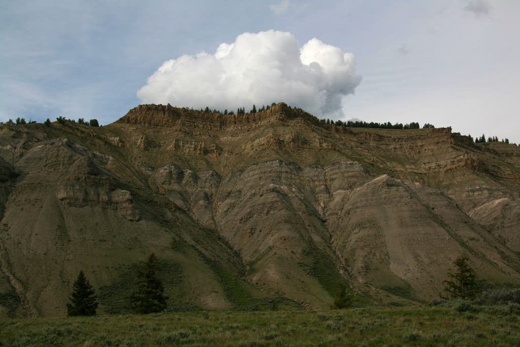 Gray Hills