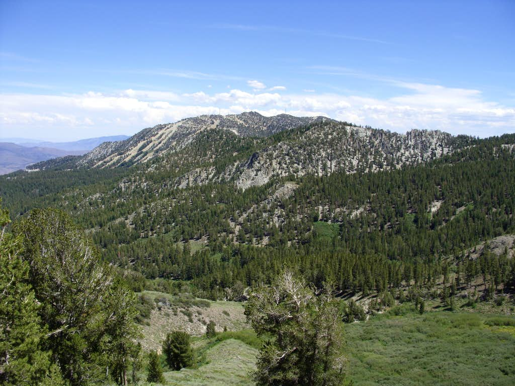 Slide Mountain from Mount Rose Trail
