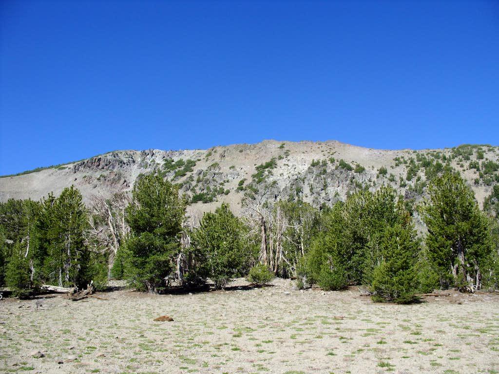 Houghton summit ridge