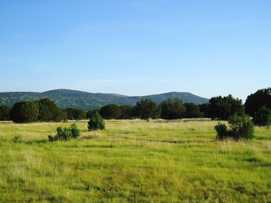 Gavina Ridge