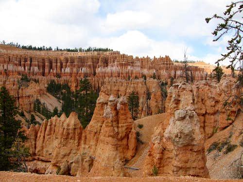 Brcye Canyon