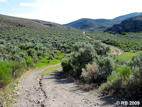 Knoll Mountain access road