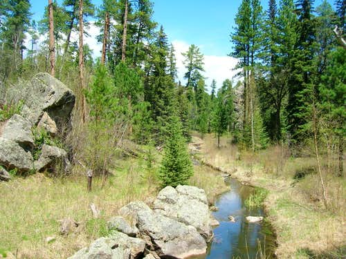 Iron Creek, in the Black Elk Wilderness