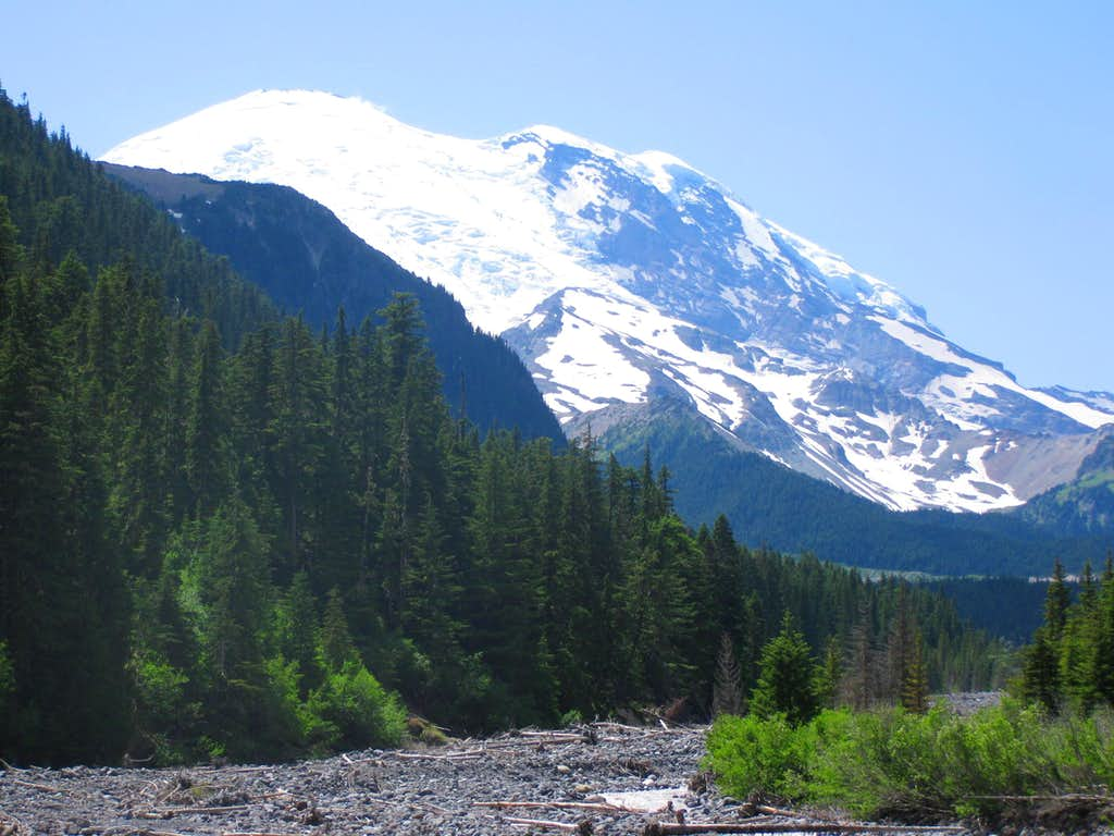 Mt. Rainier from White River Campground