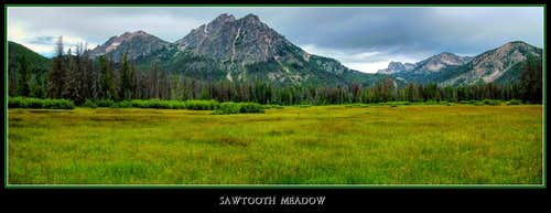 Sawtooth Meadow
