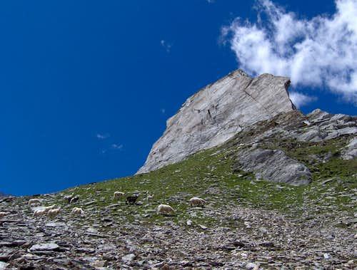 Windbach Valley