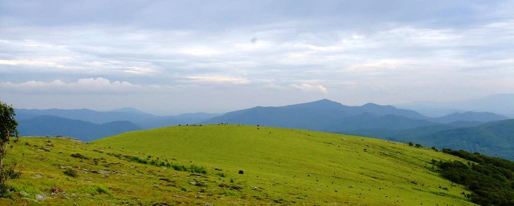 Big Yellow Mountain Summit View East