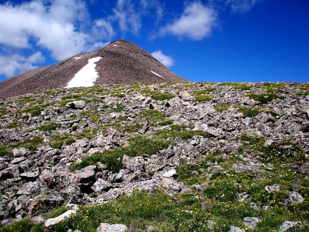 East ridge of Wasatch Benchmark