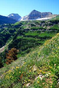 Scene of Timp, Forgotten Peak's north east ridge.