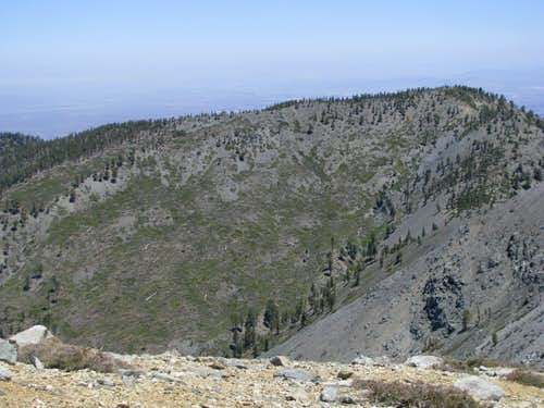 Near W Baldy/Baldy Saddle