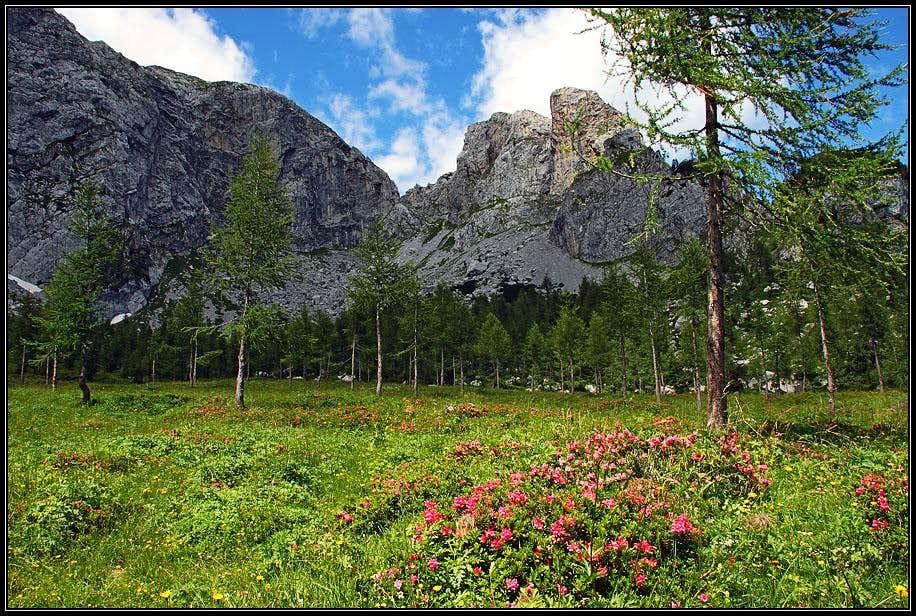 In Winkel valley