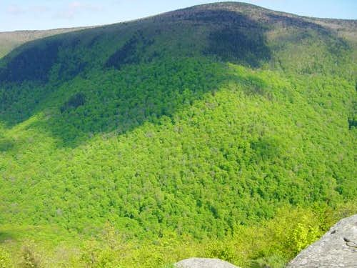 Mt Greylock from Stoney Ledge