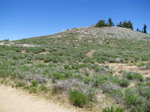 subsummit east of Pinos
