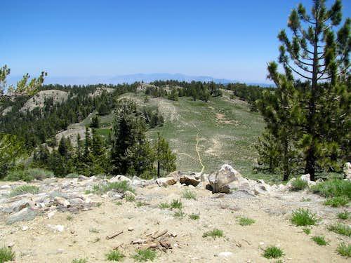 a side trail on the summit ridge