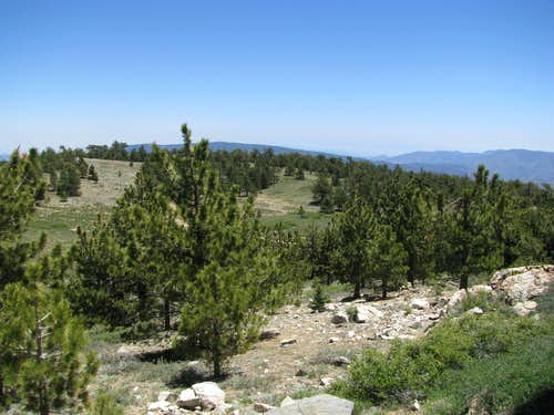 southeast from Pinos Summit