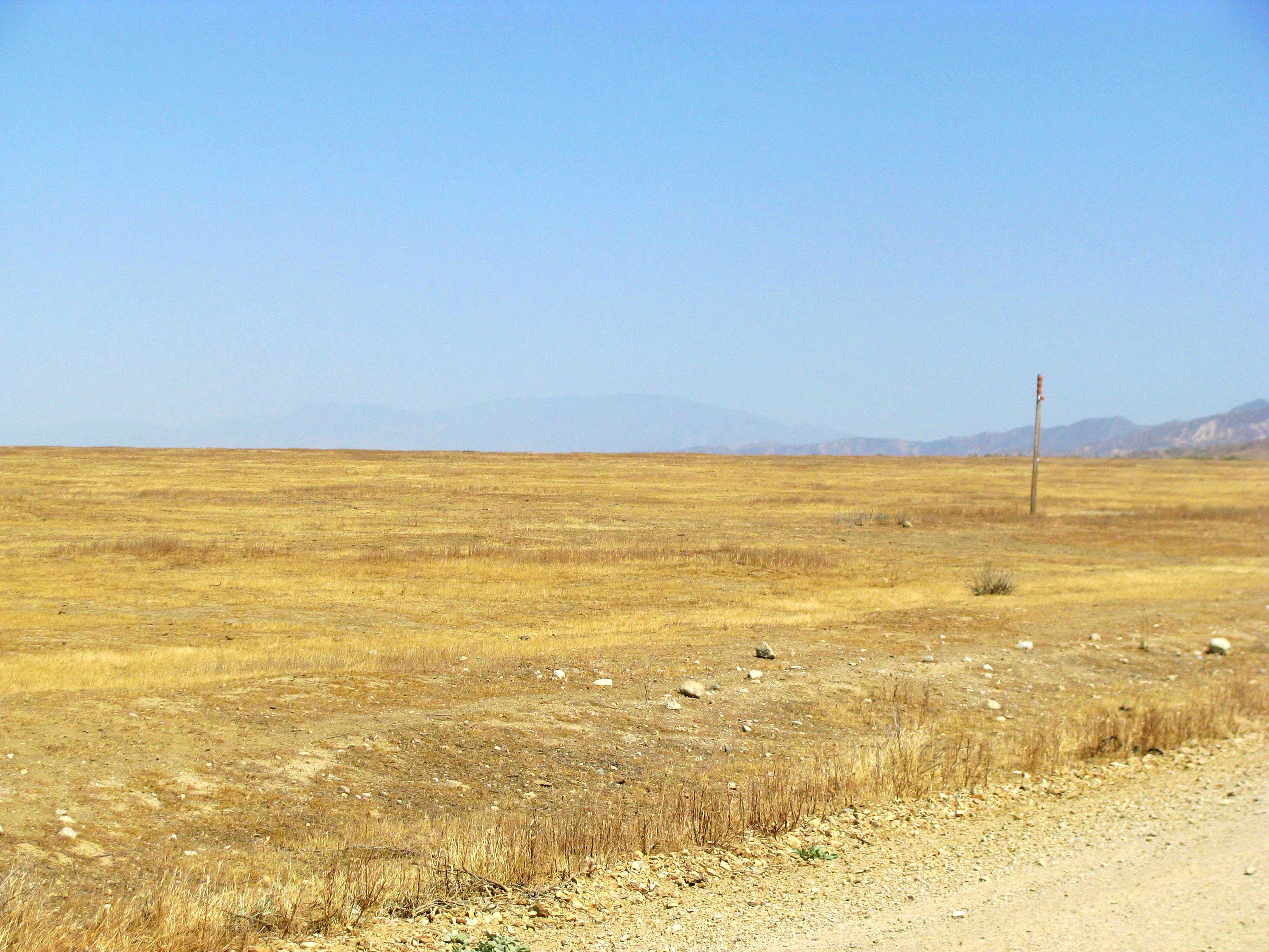 Pinos and Carrizo Plain